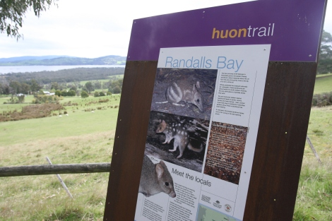 The views are great along the Huon Trail