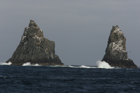 The Friars at the mouth of Storm Bay