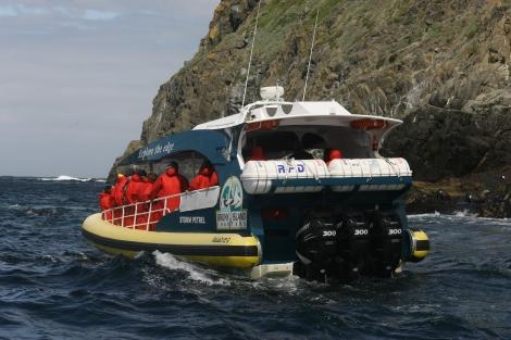 Bruny Island Cruises boat up close
